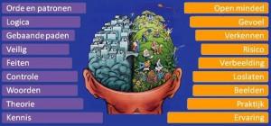 linker-en-rechter-hersenhelft